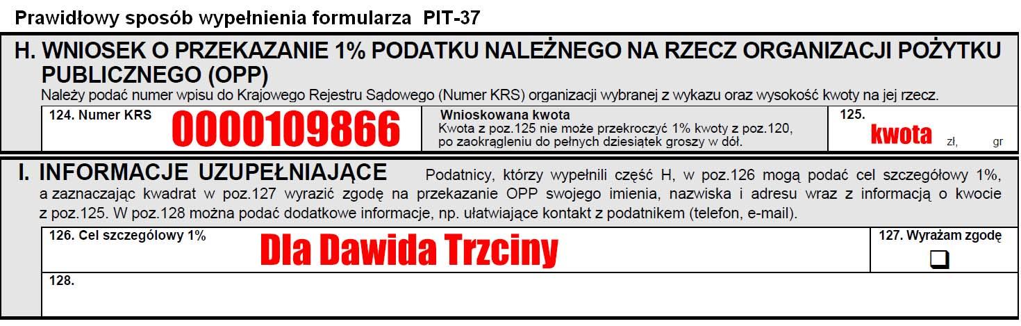 dawid trzcina pit37