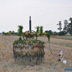 dozynki_gawlow-137