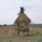 dozynki_gawlow-139