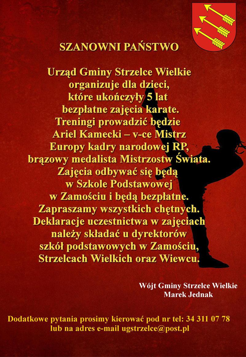 plakat_karate