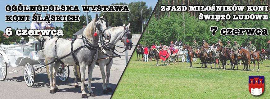 konie-slaskie-zjazd