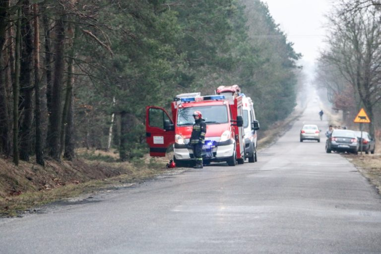 Śmiertelny wypadek podczas wycinki lasu
