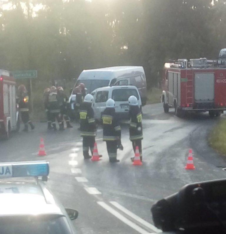 Nowa Brzeźnica. Wypadek na DK42