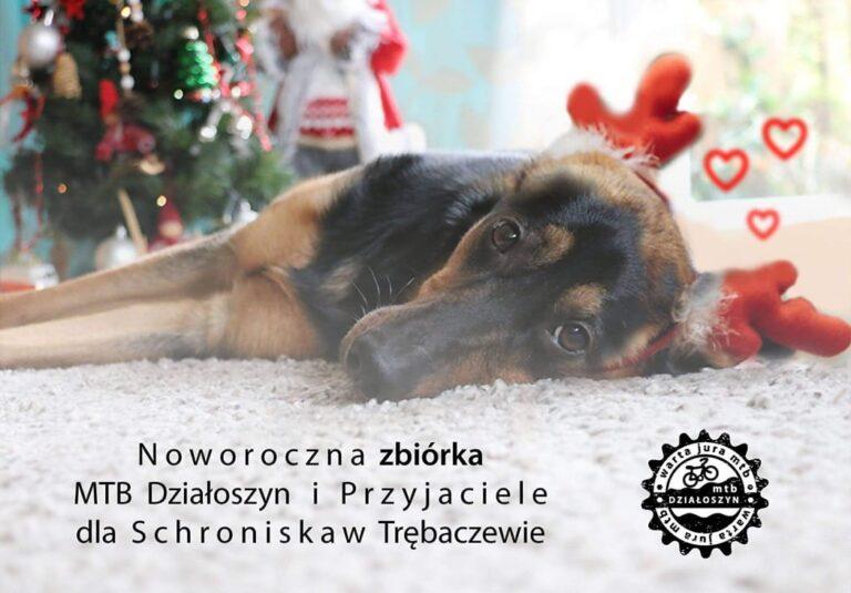 Noworoczna zbiórka dla Schroniska w Trębaczewie
