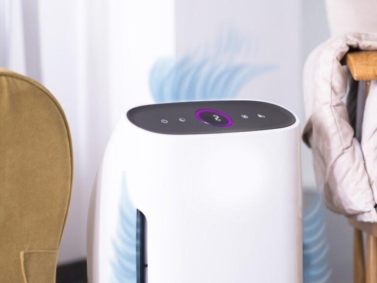 Oczyszczacz powietrza z nawilżaczem. Jak wybrać dobry sprzęt?